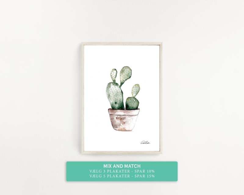plakat med kaktus
