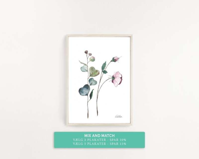 plakat grøftekantsblomst lyserød