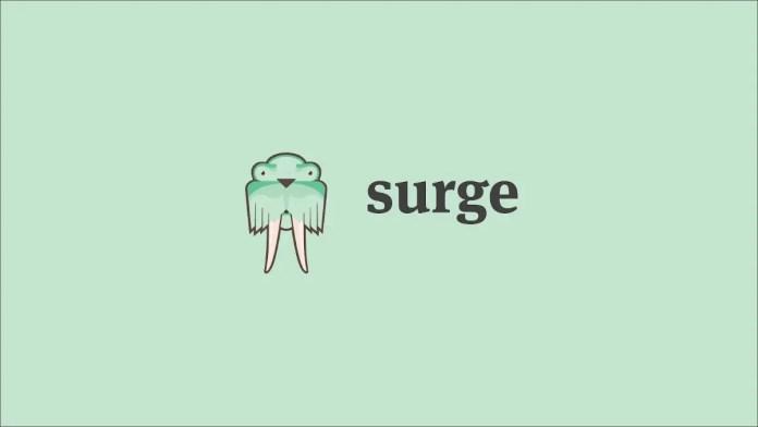 Illustration showing the Surge.sh logo