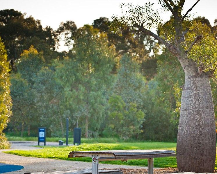 lochiel-park-3