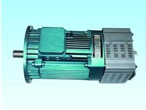 Transmission Motor for Construction Hoist Or Passenger Hoist