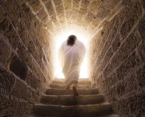 reasons to trust the resurrection