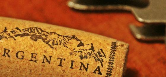 vino argentino malbec mendoza salta
