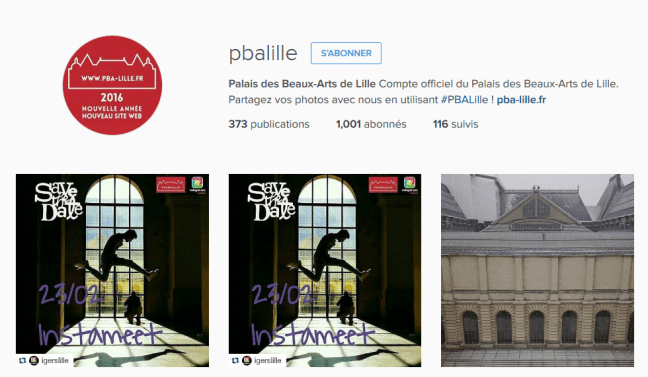 FireShot Screen Capture #089 - 'Palais des Beaux-Arts de Lille (@pbalille) • Photos et vidéos Instagram' - www_instagram_com_pbalille