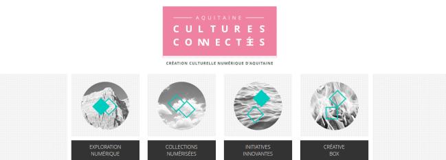 FireShot Screen Capture #212 - 'Aquitaine Cultures Connectées I Création culturelle numérique d'aquitaine' - culturesconnectees_aquitaine_fr