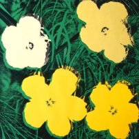 Groninger Boterbloemen+Warhol_flowers