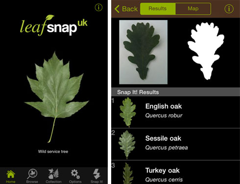 NHM UK appli leafsnap-app_130905_2