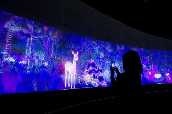 National Museum of Singapore story of forest teamLab 10