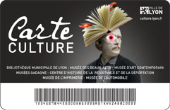 lyon carte-culture-1