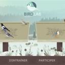 mnhn app birdlab pic 1