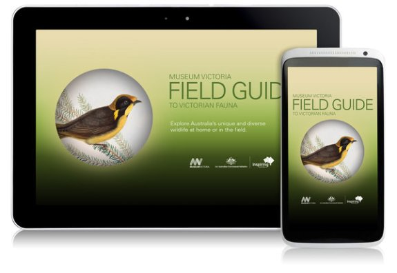 museum victoria app android_vic_promo_both_600px