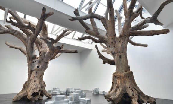 royal-academy tree aww