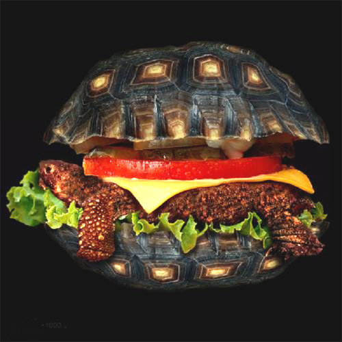 Sandwich Fast Food Restaurants