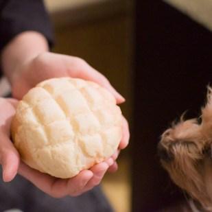 メロンパン cotta クッキー ざくざくメロンパン 手作り パン お菓子