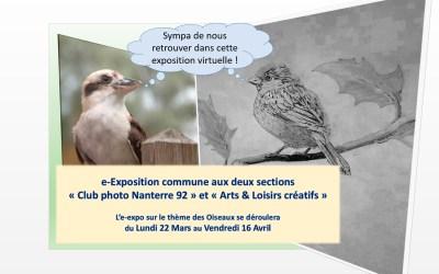 E-exposition sur le thème des oiseaux par les sections Photo et Arts Créatifs de Nanterre-Picasso