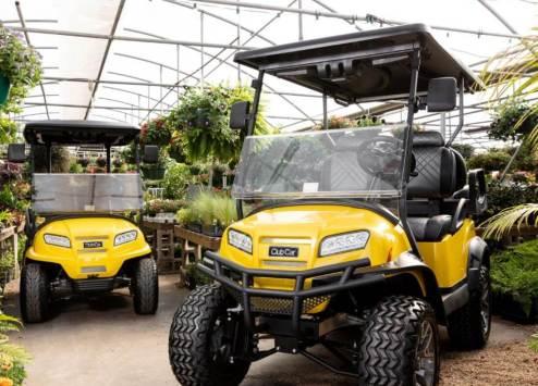 yellow onward special edition - Club Car Onward - SunShine Special Edition