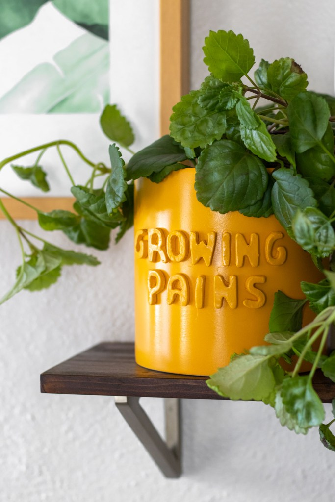 DIY 3D Graphic Planter Pots (Anthropologie Knock-Off) | Club Crafted