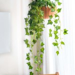 Diy Hanging Pumpkin Planter For Fall Decor Club Crafted