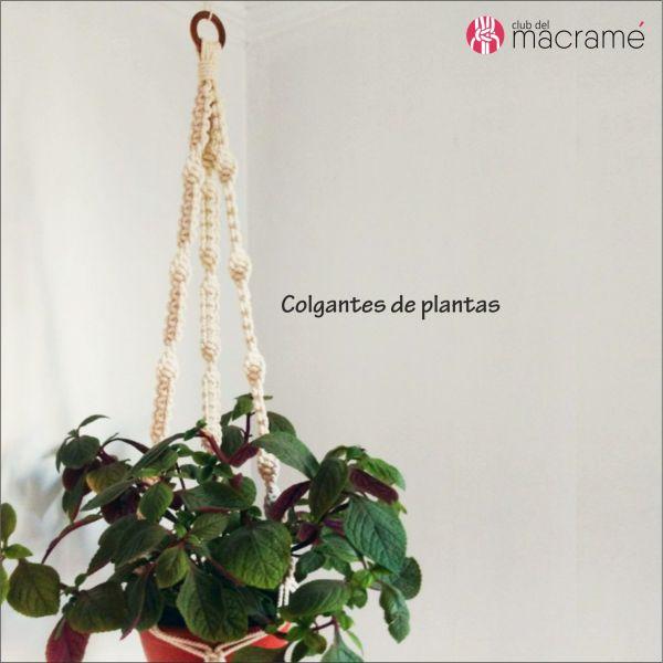 Colgador de plantas