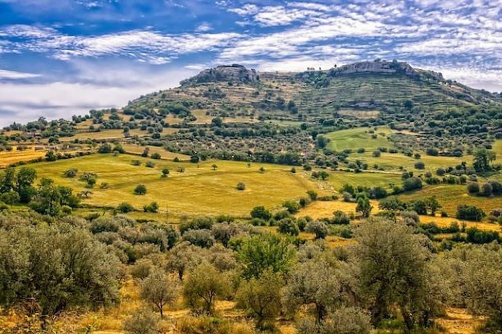 giovanni-verga-sicilia-libertà