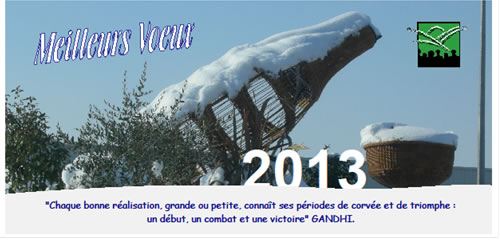 voeux-2013