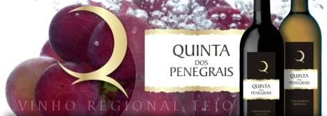 Quinta dos Penegrais
