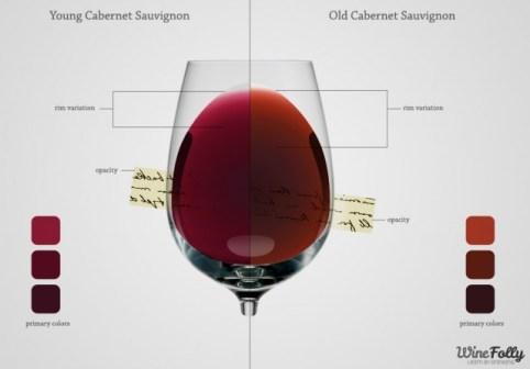 color-of-wine-primary-indicators-640x446