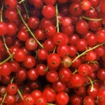 Groselha Odor e sabor frutado que recorda o do fruto da groselheira. Existe uma groselha preta, também chamada cássis, cujo aroma se encontra sobretudo nos vinhos tintos.
