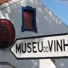 museu_do_vinho_biscoitos_adega_da_casa_agricola_brum_lda_-1