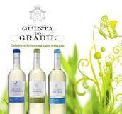 Quinta-do-Gradil