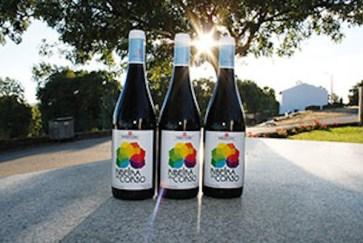 vinho-biologico