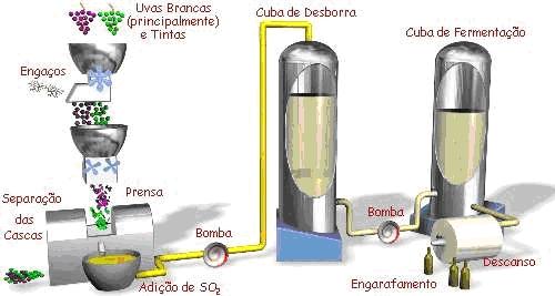 fluxograma processo vinho branco