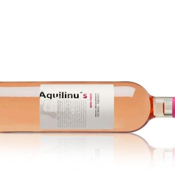 Aquilinus-rose