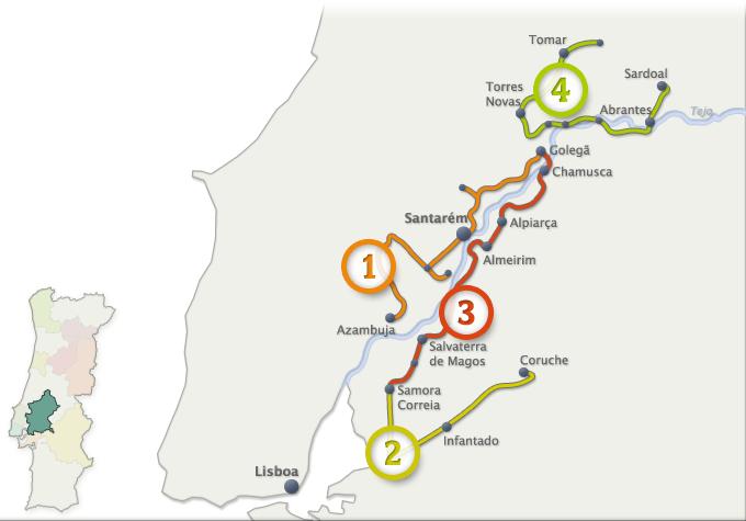 ROTAS DOS VINHOS – RIBATEJO – Vinhos doTejo (clique na imagem para mais detalhes)