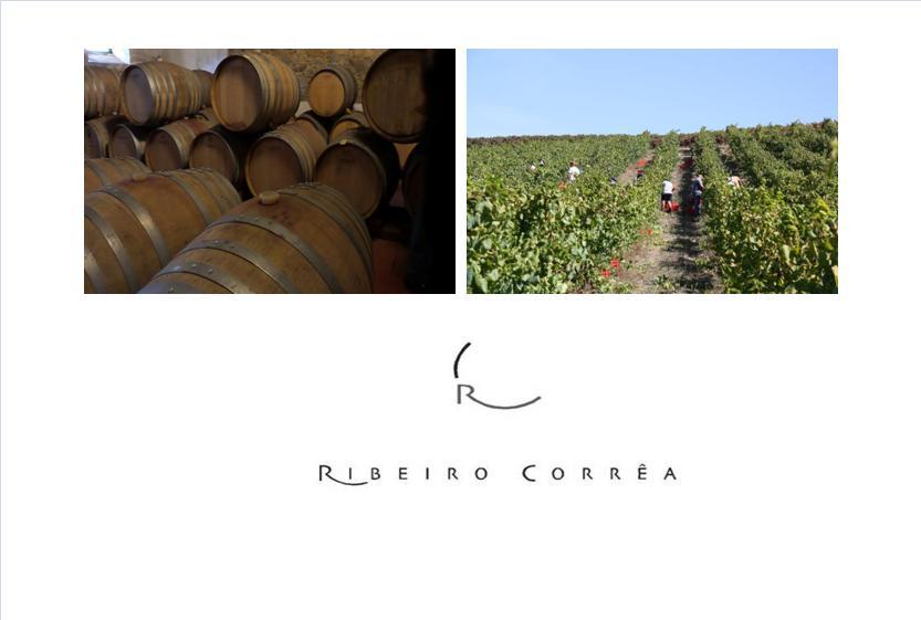 CASA AGRÍCOLA RIBEIRO CORREA - Arruda dos Vinhos
