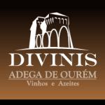 logo divinis