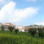 Mosteiro de Alcobaça4