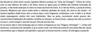PRAIA DE VIEIRA12