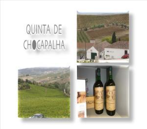 Contactos Aldeia Galega da Merceana 2580-081 Aldeia Galega da Merceana Tel.: +351 263 769 317 Fax: +351 263 769 316 E-mail: chocapalha@chocapalha.com Página web: http://www.chocapalha.com