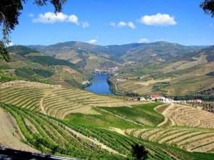 enoturismo-portugal