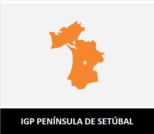 IG PENÍNSULA DE SETÚBAL