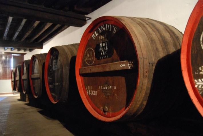 Região do Vinho da Madeira e como se produz 16