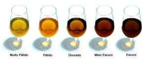 TIPOS DE VINHO DA MADEIRA