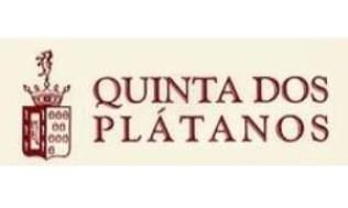 Quinta dos Plátanos Logo_thumb6