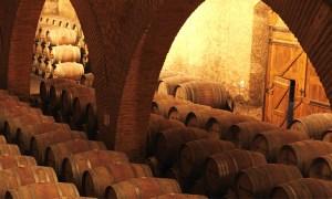 enoport_united_wines-700x420