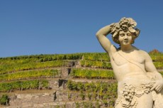 iStock_000008055108Small-bacchus-at-vineyard-e1383316704501