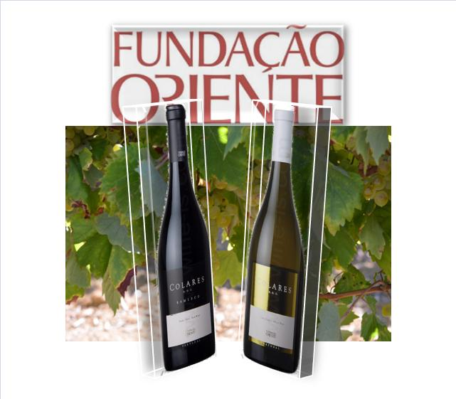 LOGO FUND ORIENTE