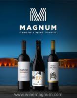 Magnum vinhos