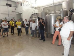 explicando o processo de vinificação de vinhos brancos