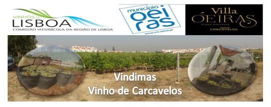 logo-vindimas-carcavelos-2016